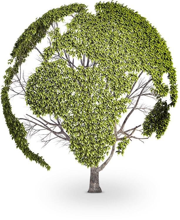 imagem-quer-reciclar